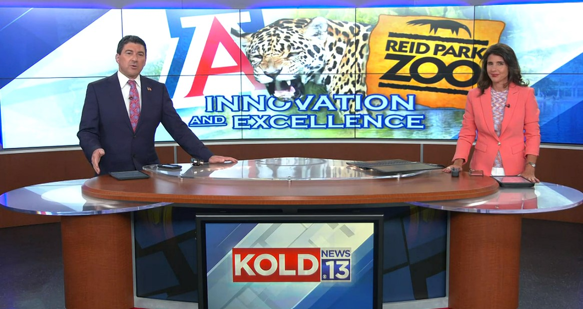 Screenshot of a newscast. Two anchors (one man and one woman) sit at a news desk. The station name, KOLD, is on the desk in front of them. on the screen behind them are the University of Arizona Block A, the Reid Park Zoo logo, and a photo of a jaguar.